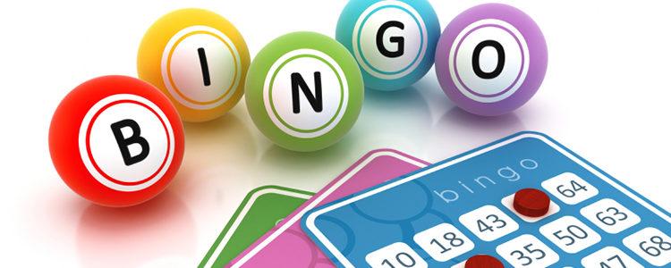 Bingo Bonuses0